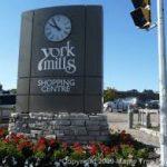 Erica - York Mills & Lawrence Park